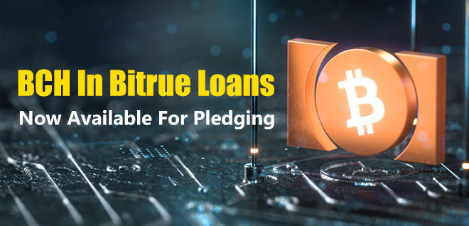 BCH Can Now Be Pledged In Loans